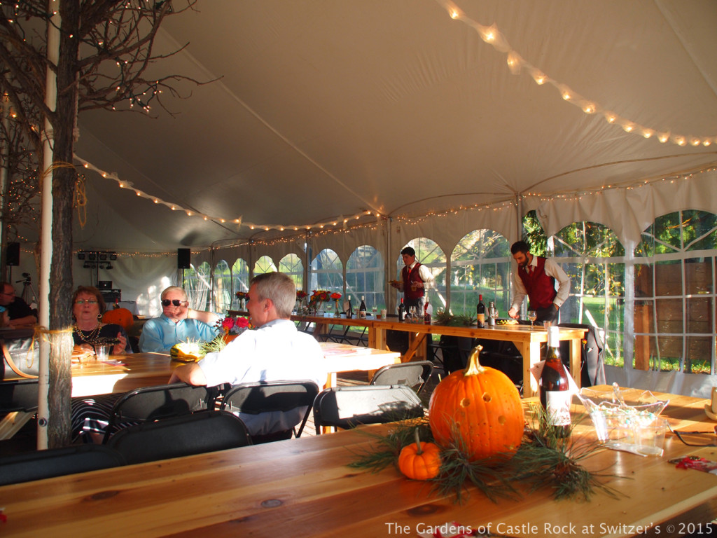 Fall Lath House Wedding - Carissa & Randy at The Gardens of Castle Rock - Minnesota Wedding Venue