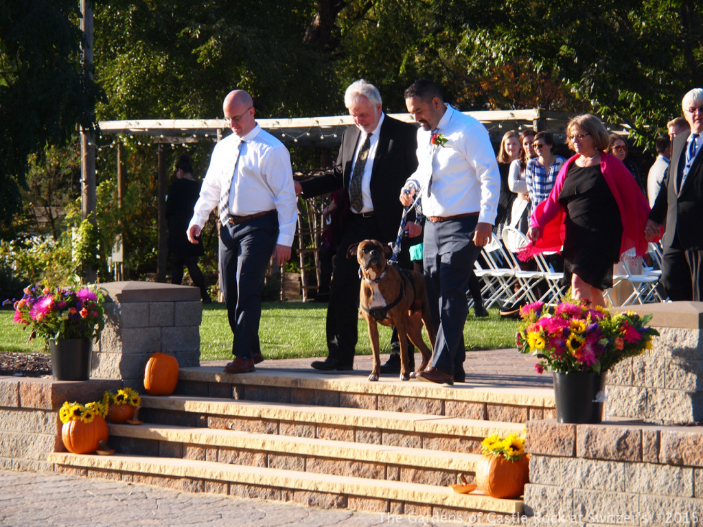 The best dog.... Sunny & Brian at The Gardens of Castle Rock ~ Weddings & Events - Beautiful Outside Fall Wedding
