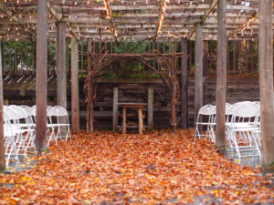 Emily & Adam at The Gardens of Castle Rock ~ Amazing October Minnesota Wedding