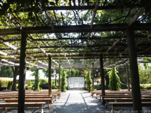 Jessa & Alex at The Gardens of Castle Rock - Minnesota Nature Inspired Wedding in the Lath House