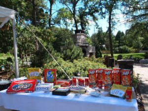 Michelle & Brian at The Gardens of Castle Rock ~ Minnesota Garden Wedding Party - Wedding Day Fun with board games